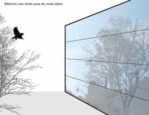 ornilux bird protection glass,vidros que salvam a vida de passaros,vidro previne acidente com passaros