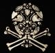 francois robert,arte com ossos,caveiras
