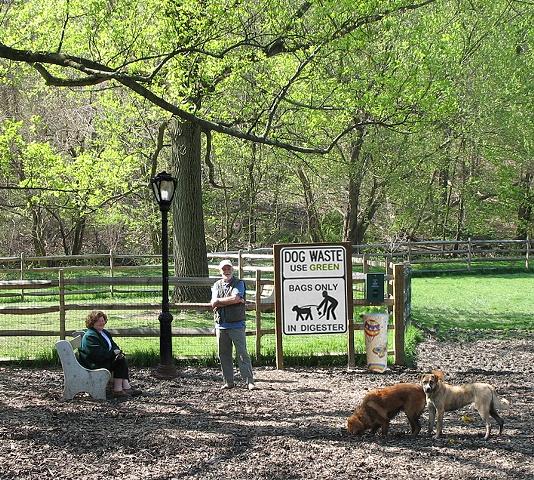 The Park Spark Project,luz movida a coco de cachorro,sustentabilidade,ecofriendly,underconstruction blog,biodigestor